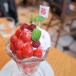 鎌倉案内・cafe vivement dimanche(カフェ・ヴィヴモン・ディモンシュ)春の季節限定メニュー苺パフェ「プリマヴェーラ」