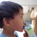 双子の息子「2歳11ヶ月の記録」